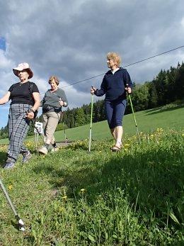 Nordic Walking II. Po valašských kopcoch._1127