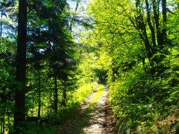 Nordic Walking II. Po valašských kopcoch._1147