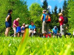 Nordic Walking II. Po valašských kopcoch._1173