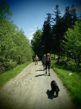 Nordic Walking II. Po valašských kopcoch._1247