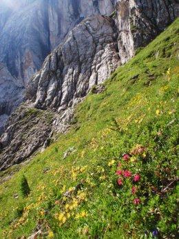 Klettersteig 2012 / Lienzer Dolomiten_313