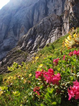 Klettersteig 2012 / Lienzer Dolomiten_314