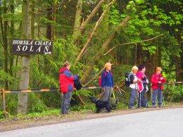 Nordic Walking II. Po valašských kopcoch._775