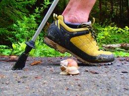 Nordic Walking II. Po valašských kopcoch._847