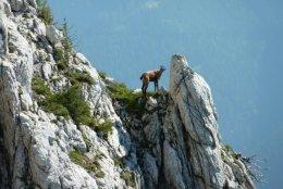 Klettersteig / Rakousko Štýrsko - Hochschwab-Gruppe_93